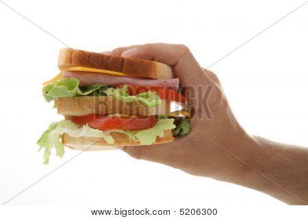 Hand Holding Sandwich
