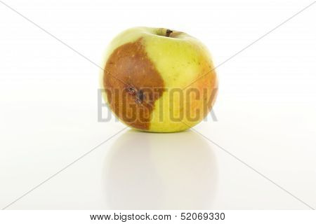 Is There A Worm In That Apple?
