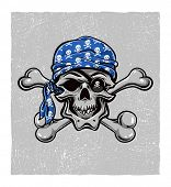 picture of gold tooth  - Skallywag Pirate Skull - JPG