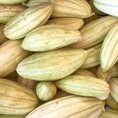 picture of muskmelon  - fresh green muskmelons close up - JPG