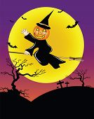 picture of night-blooming  - The pumpkin head ride the bloom in halloween night - JPG