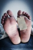 stock photo of stiff  - Two feet of a dead body - JPG