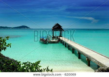 Jetty - Beach Scenery