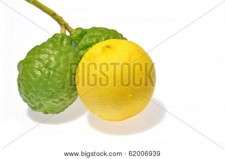 Lemon and Kaffir Lime