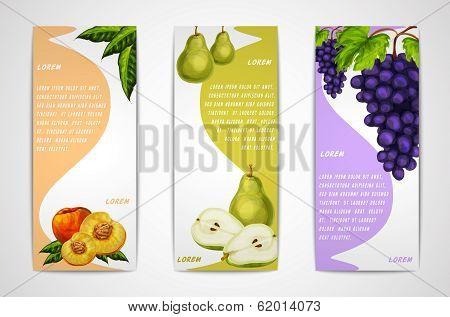 Mixed organic fruits banners collection