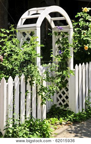 White arbor with blooming roses in a garden