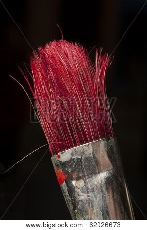 Part Of Paintbrush Used For Red