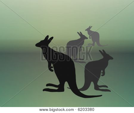 austalian kangaroos silhouette