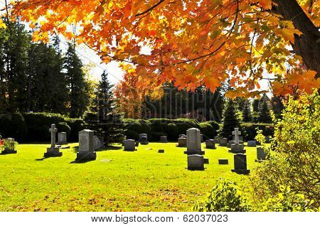 Bright graveyard lawn with ancient tombstone crosses