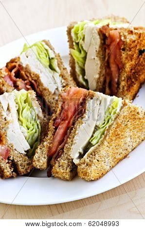 Toasted club sandwich sliced on a plate