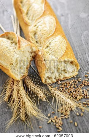 Freshly baked white baguette with wheat ears and grain