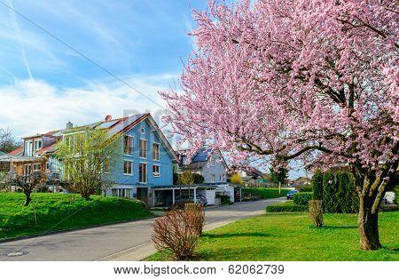 Modern Houses In Spring