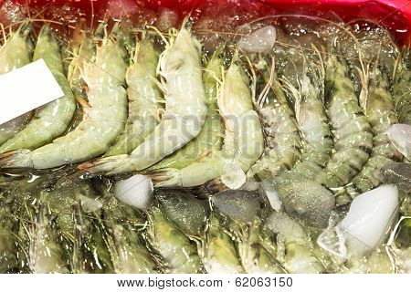 Shrimp In Market
