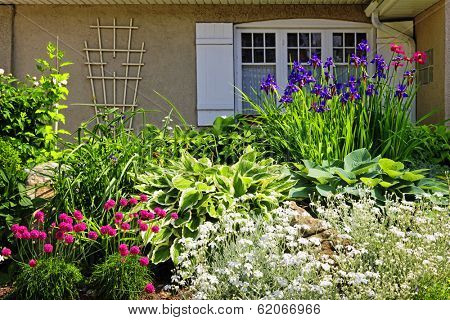 Residential landscaped garden with flowers and plants