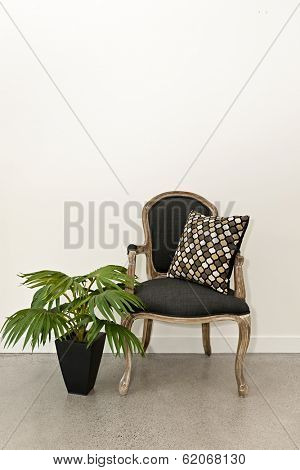 Antique armchair furniture with houseplant against white wall