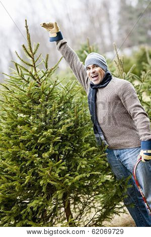 Man at cut your own Christmas tree farm showing tall spruce
