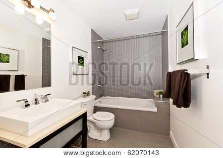 Interior three piece bathroom