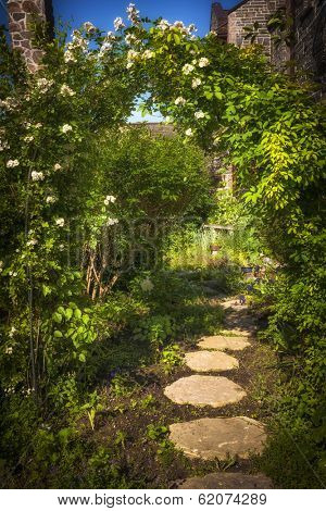 Summer garden with paved path and trellis