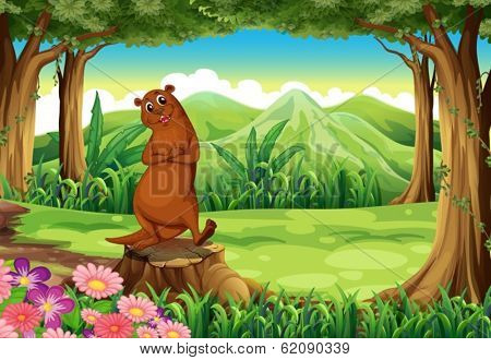 Illustration of a smiling sealion above the stump in the forest