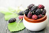 stock photo of mulberry  - Ripe mulberry berries in a bowl - JPG
