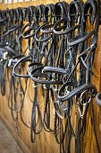 pic of bridle  - Leather horse bridles and bits hanging on wall of stable - JPG