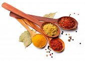pic of cinnamon  - Spices - JPG