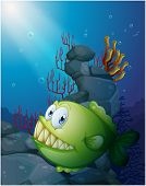 foto of piranha  - Illustration of a big piranha under the sea near the rocks on a white background - JPG