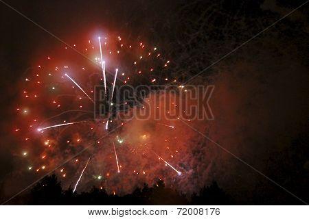 Celebrating Firework In The Black Night Sky