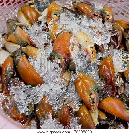 Stone Crab Claws On A Ice In Thailand Market