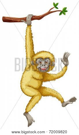 illustration of a gibbon hanging on a branch