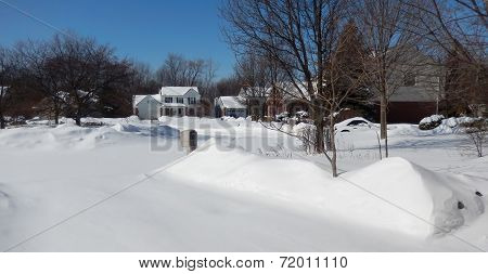 Front yard in winter