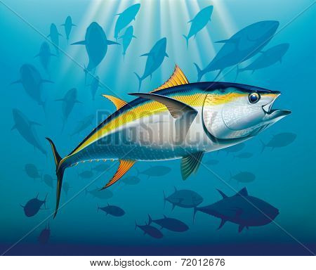 Shoal of yellowfin tuna in deep water. Raster illustration.