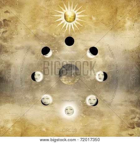 Lunar Phases In Circular