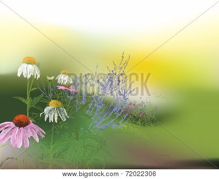 Glorious summer morning background