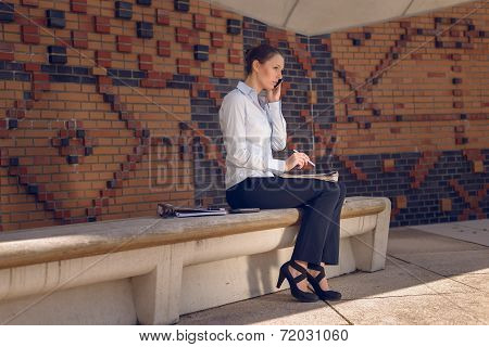 Woman Doing Business In A Commercial Foyer