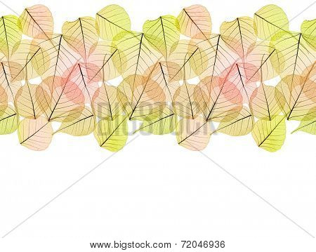 Autumn Dry Golden Leaves - Seamless Border isolated on white background