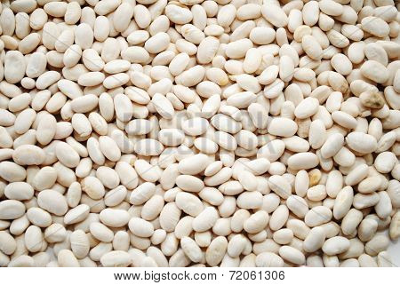 Background Of Great Northern White Beans