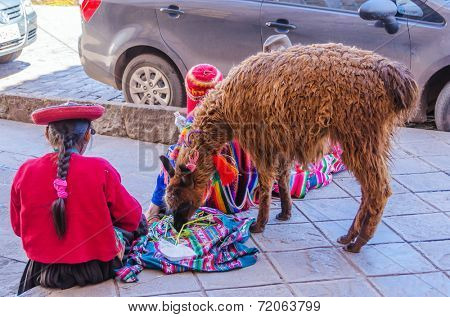 CUZCO, PERU, MAY 1, 2014: Local woman in traditional attire with a llama waits for tourists. She earns  money posing for tourists.