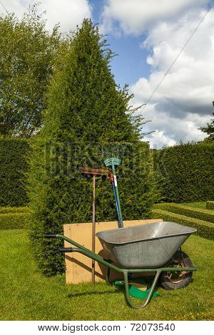 Garden tools leaning upright against a yew tree next to a wheel barrow