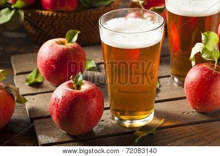 Hard Apple Cider Ale