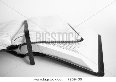 Two Bibles on White