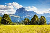 picture of south tyrol  - Great view on the Sassolungo  - JPG