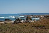 image of mendocino  - A panoramic view of the coast of Fort Bragg in Mendocino County, California