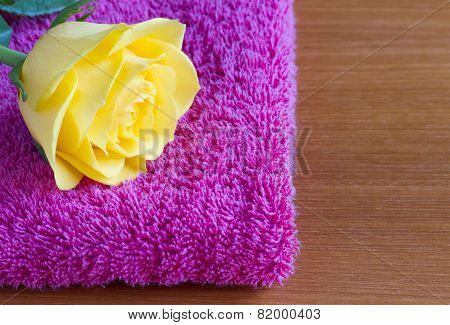 Beautiful yellow rose on a pink towel