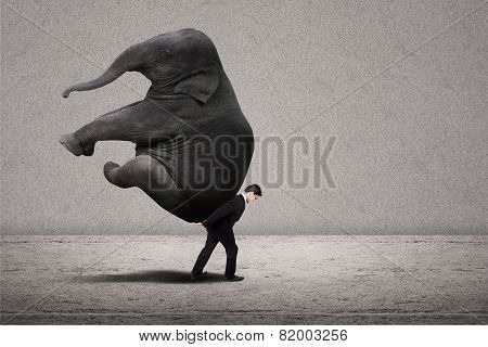 Business Manager Carry Elephant On Grey - Leadership Concept