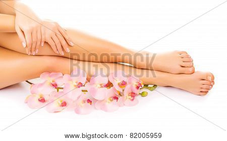 manicure and pedicure with a pink orchid flower