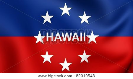Governor Of Hawaii Flag