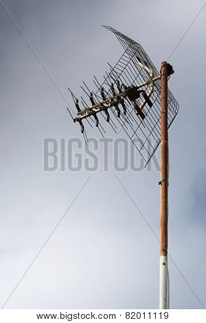 Analogue Antenna