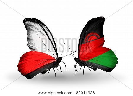 Two Butterflies With Flags On Wings As Symbol Of Relations Poland And Malawi
