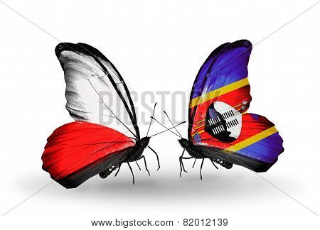 Two Butterflies With Flags On Wings As Symbol Of Relations Poland And Swaziland